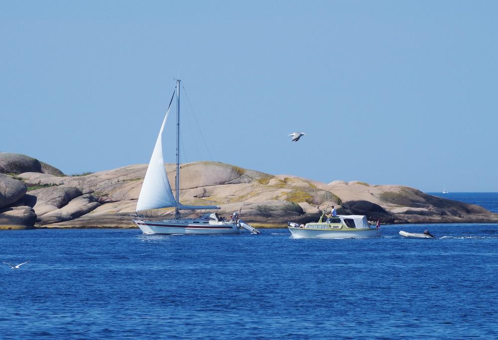 IMGP6212båtsommarll