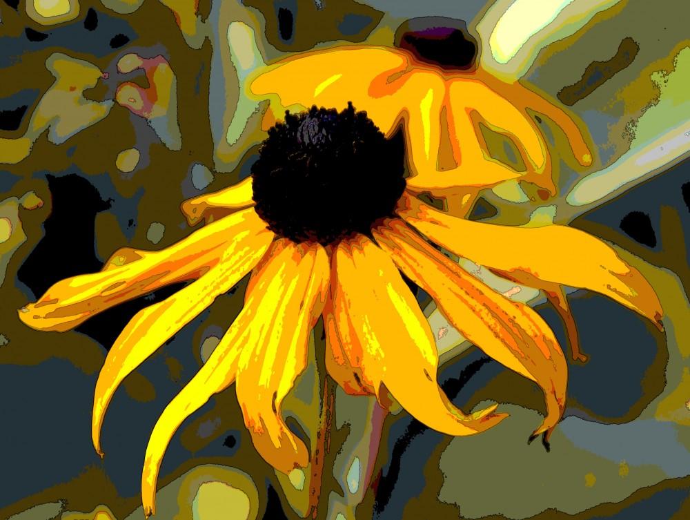IMGP2862fondvägg blommorna